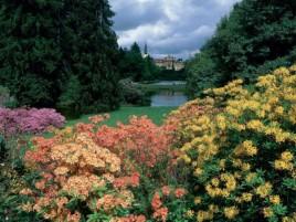 Beautiful Pruhonice park